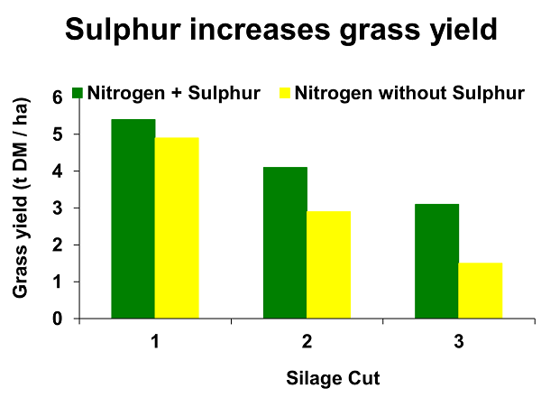 Sulphur increases grass yield