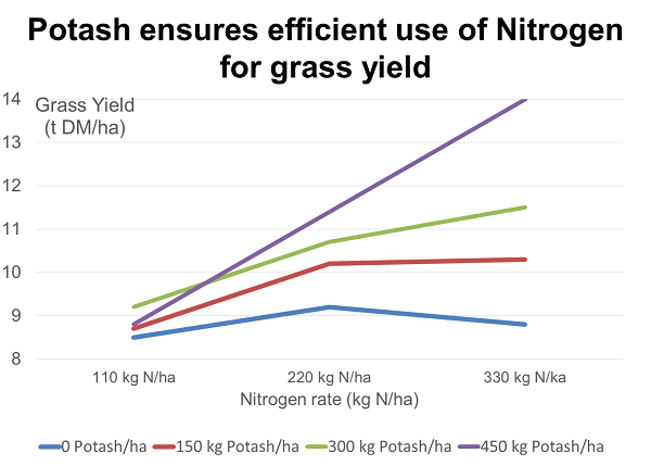 Potash ensure efficient use of Nitrogen for grass yield