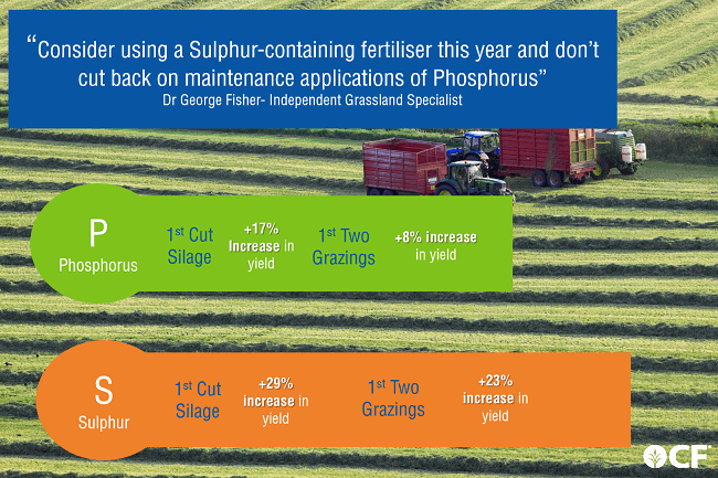 Sulphur and Phosphorus fertiliser grass research