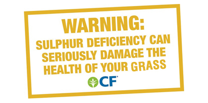 Sulphur Warning- grass.jpg