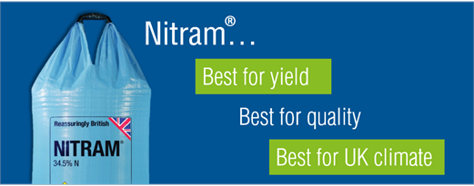 Why Nitram WIll
